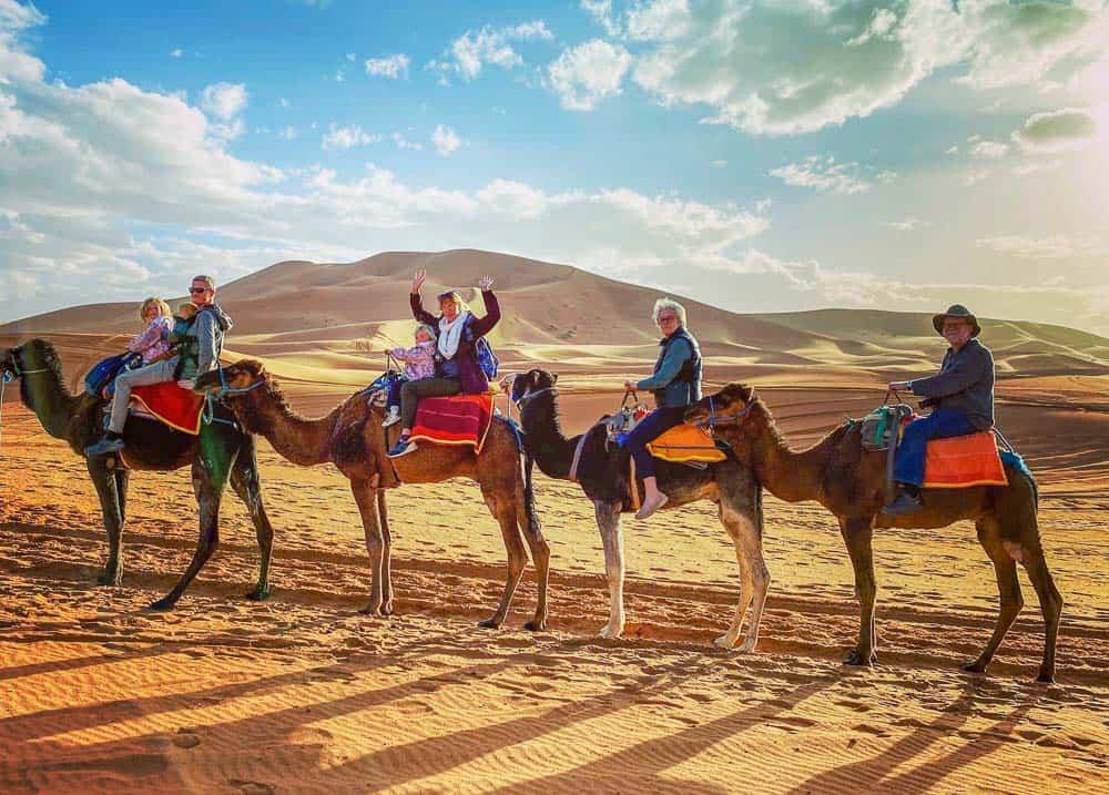 Merzouga - camels Morocco