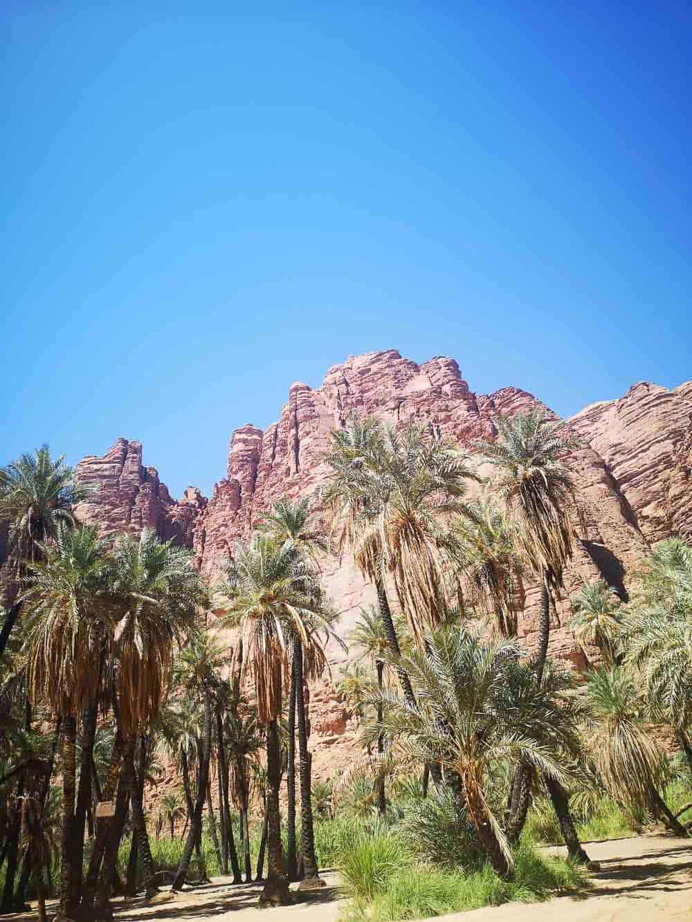 Wadi Dissah in Saudi Arabia