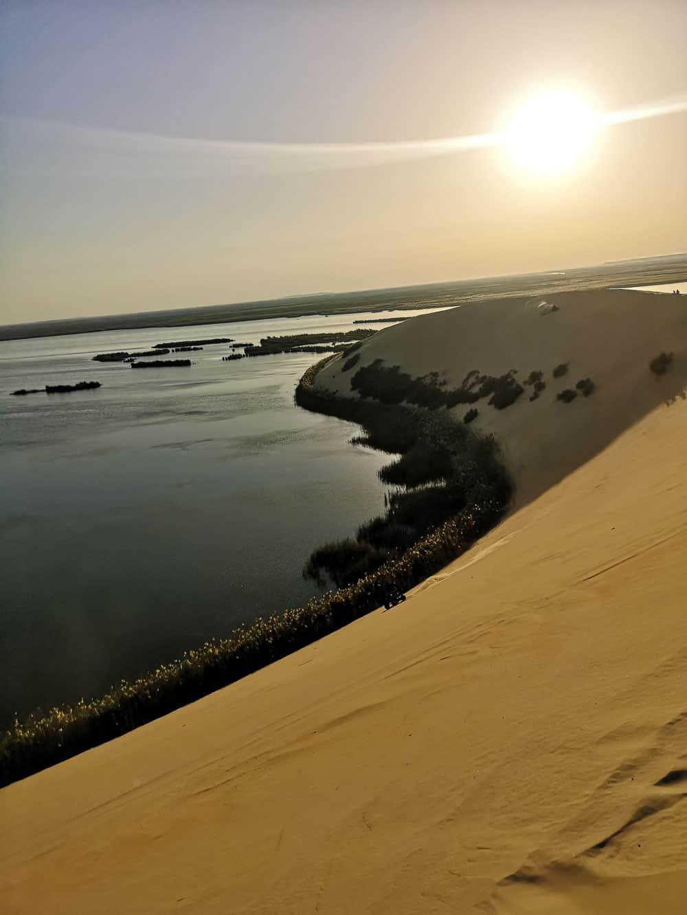 Yellow Lake in Al-Ahsa saudi arabia