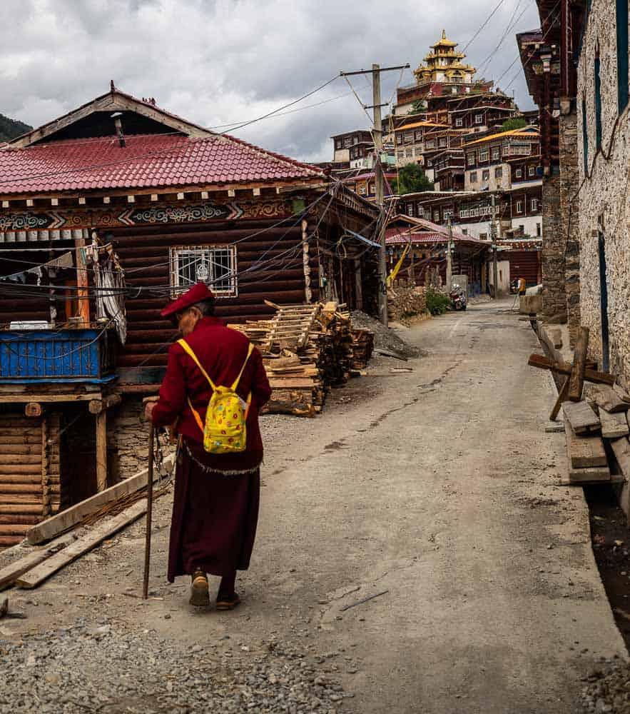 monk Palyul Monastery