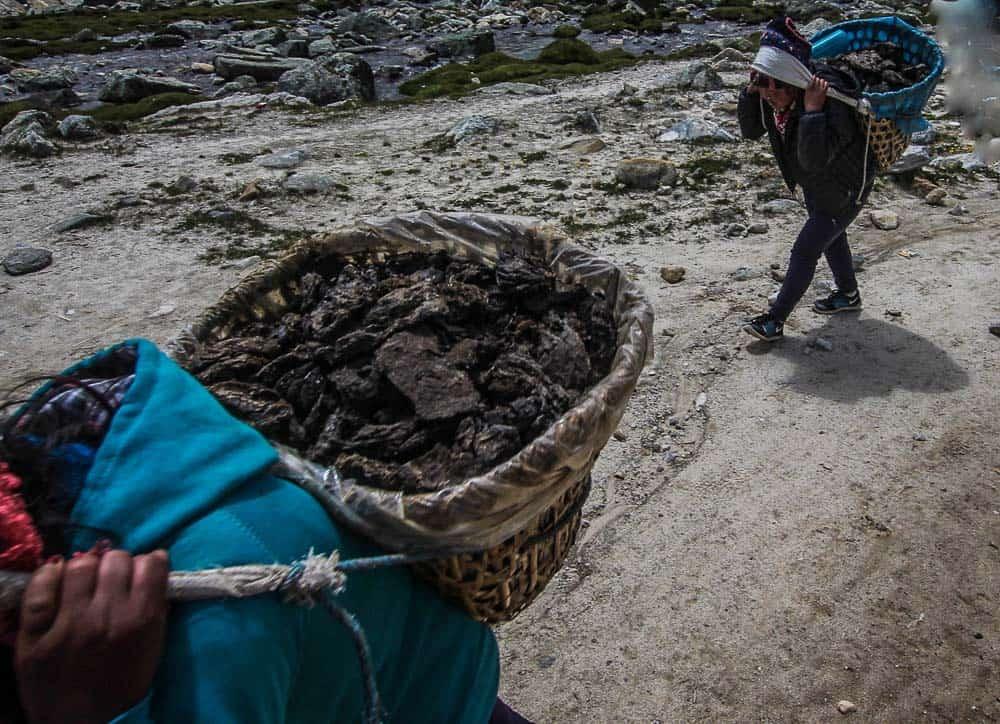yak shit nepal