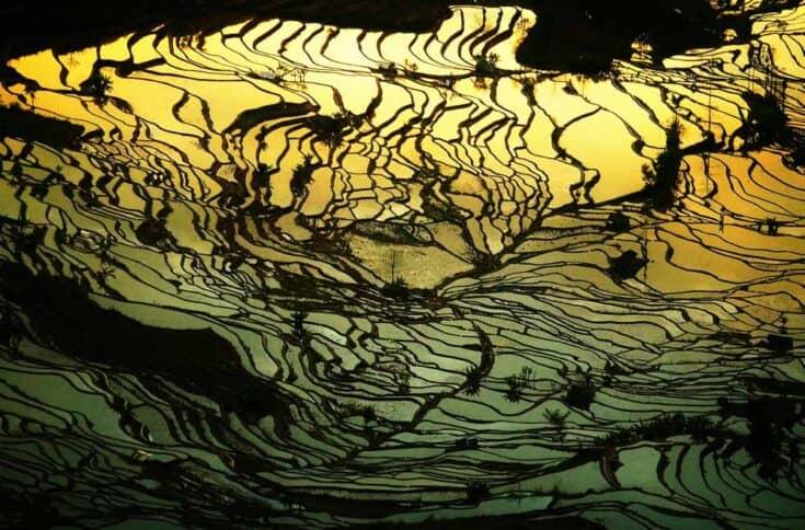 Yuanyang rice terraces in yunnan china