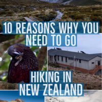 Why you need to go Hiking in New Zealand