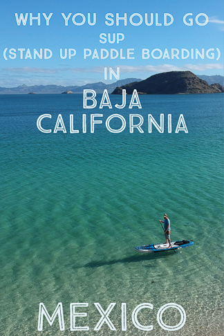 Why you should go SU, stand up paddle boarding in Baja California Mexico