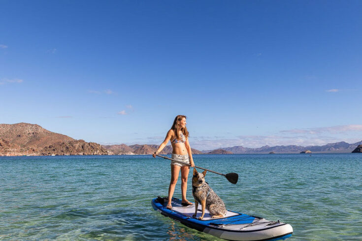 paddle boarding with dog in Mexico